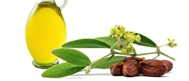 Another ingredient in our bath salts with CHIIYAAM essences:   JOJOBA OIL