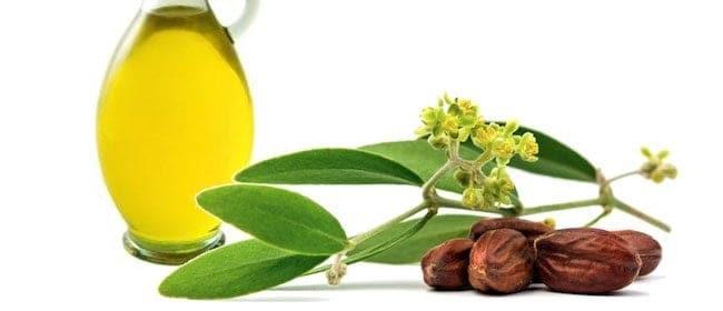 Un autre ingrédient dans notre sel de bain aux essences de CHIIYAAM:   l'huile de jojoba